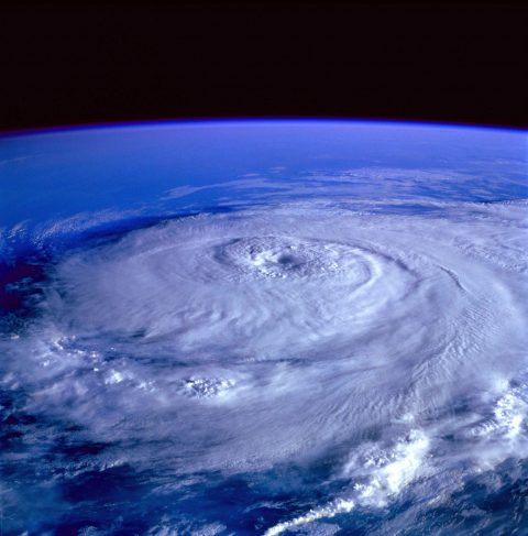 Newsletter: Der Klimawandel zerstört auch riesige Vermögen